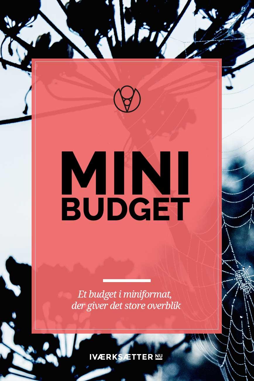 Mini budget