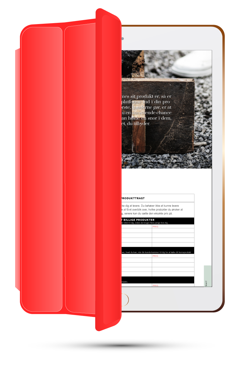 ivaerksaetterbog-ebog-ipad-download