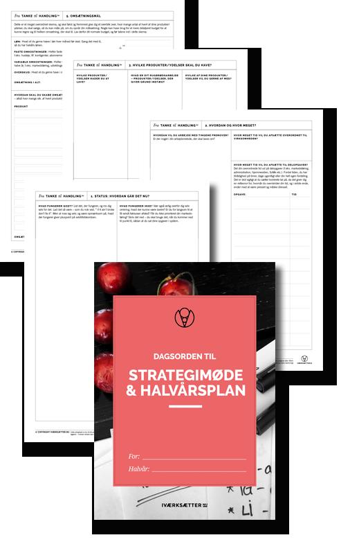 strategi-dagsorden