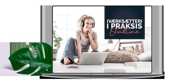 ivaerksaetteri-i-praksis-online