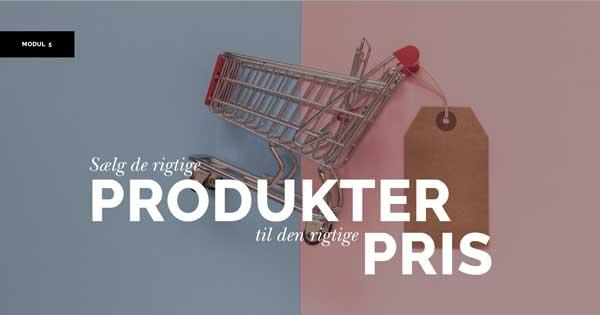 ivaerksaetteri-i-praksis-produkt-pris