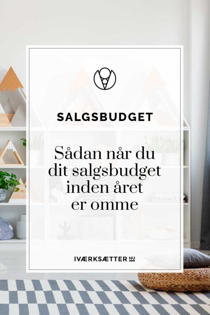 salgsbudget-naa